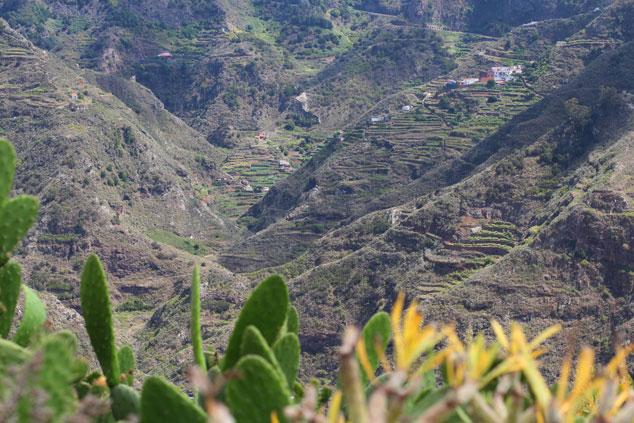 Taborno, Macizo de Anaga, Tenerife