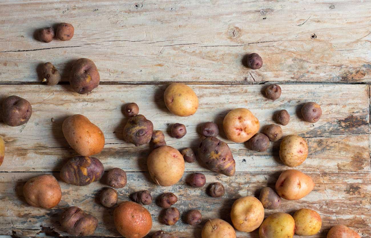 variedad de papas canarias