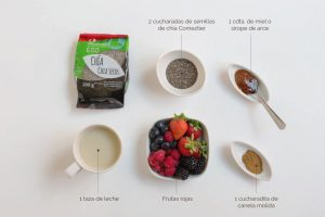 ingredientes pudin de chia